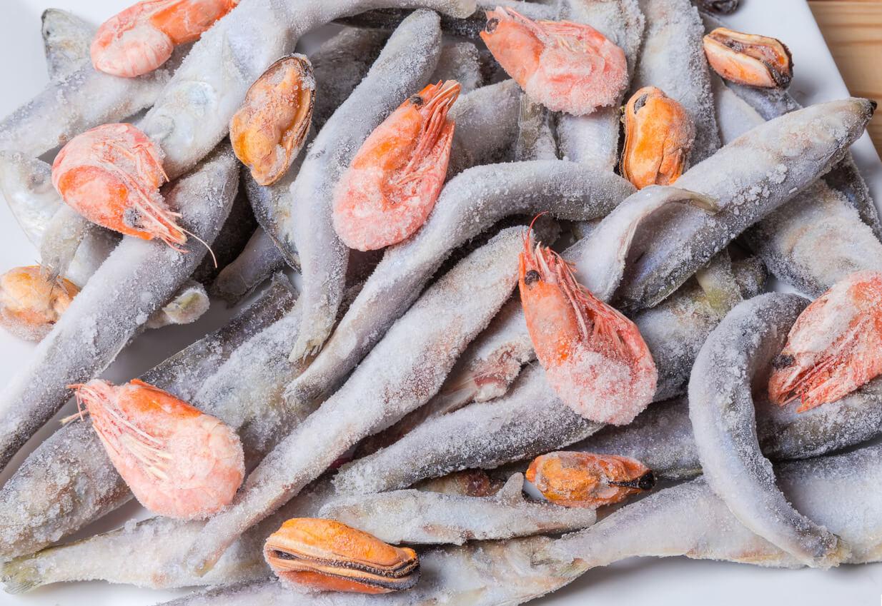 qualità pesce surgelato